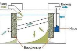 Схема вытяжки септика.