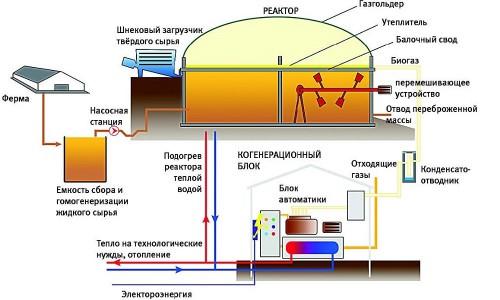 Схема самодельного биореактора